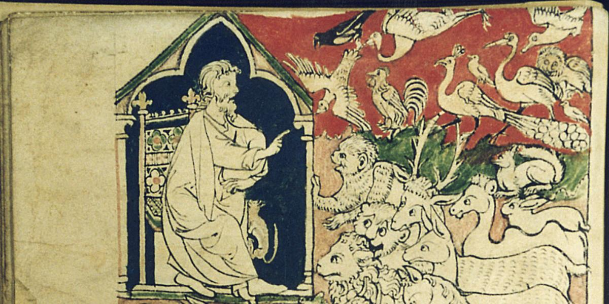 Adam names the animals in the Canterbury Cathedral Bestiary